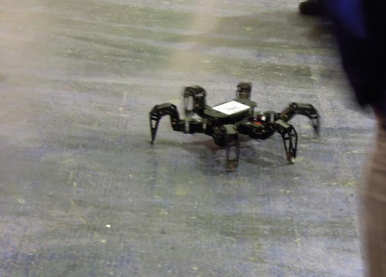 krabelnde-roboter